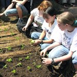_thumbnail_Food-Garden-training-for-teenagers..jpg